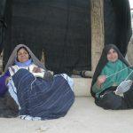 زنان گیوهچین نشلجی در حال گیوهچینی
