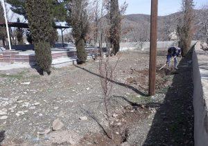 کاشت نهال در گلزار شهدای روستای سار