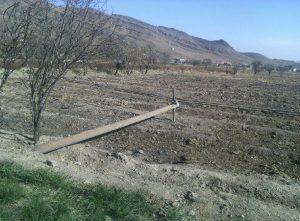 تیرک مخابرات در زمینهای کشاورزی روستای علوی کاشان