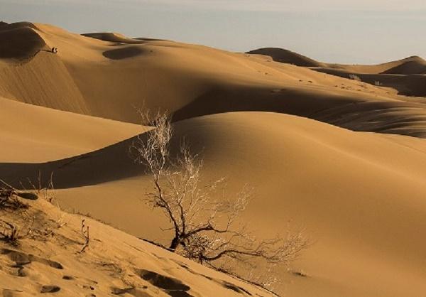 تپه شنزارهای سیازگه
