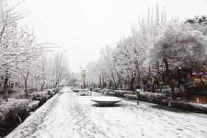زمستان جاری سرد و پربارش پیشبینی میشود