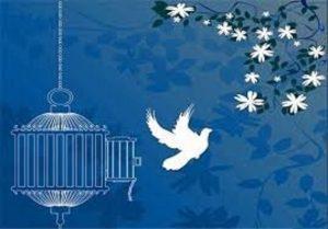یک بانو پس از ۱۷ سال حبس از زندان کاشان آزاد شد
